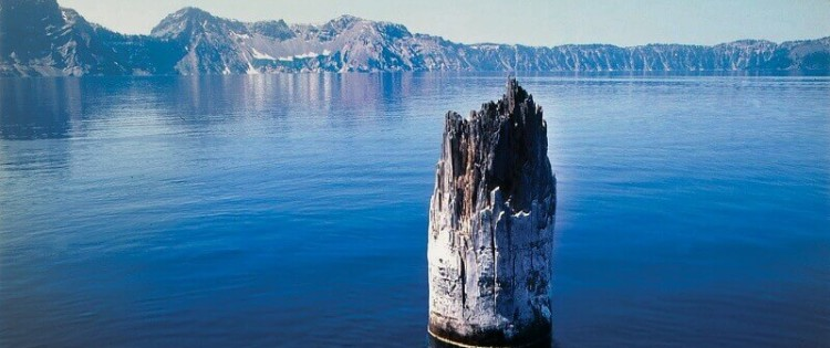 Old Man (Crater Lake) © National Parks Conservation Association